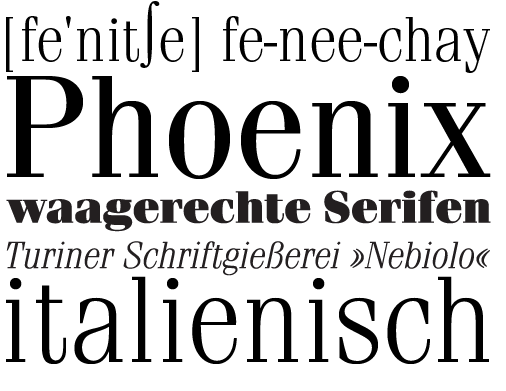 fenice_uebersicht_final